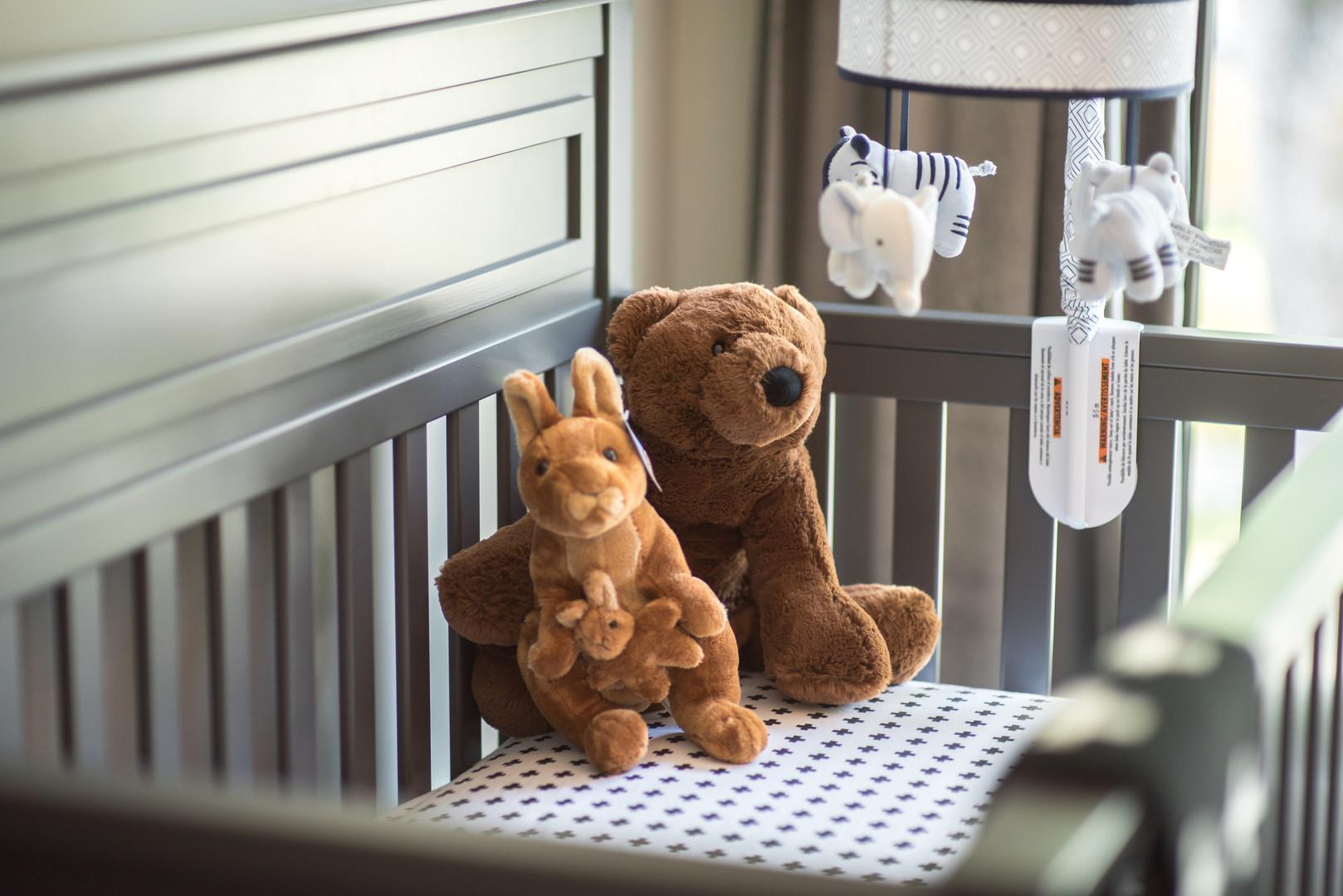 Nursery Crib & Toys