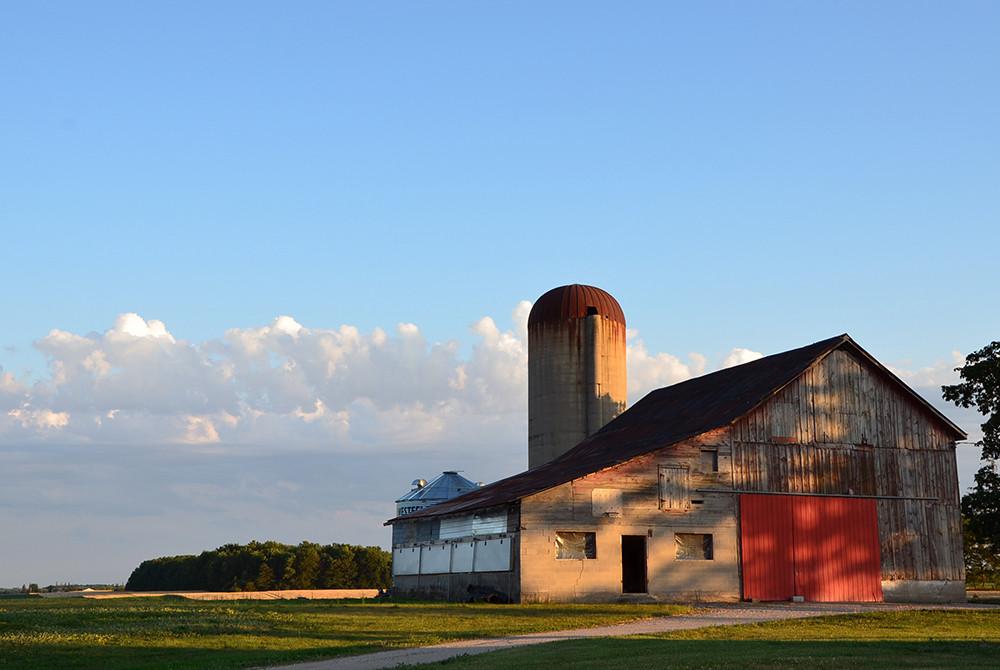 Southwestern, Ontario. July, 2012.