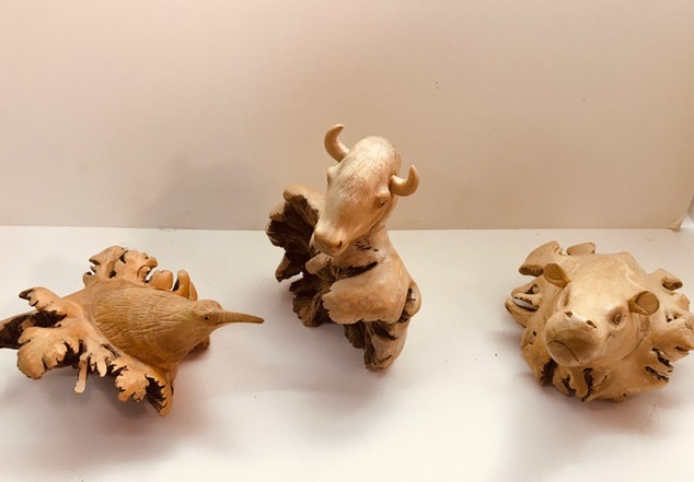 Kiwi bird & bull & hippo