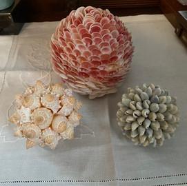 Seashell flowers