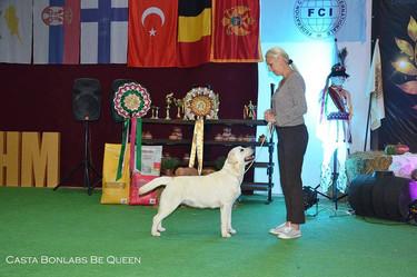 IDS Chisinau, Moldova IDS 06.10 - Excellent, JCAC, Best Junior NDS 06.10 - Excellent, JCAC, Best Junior Junior Champion of Moldova!!!
