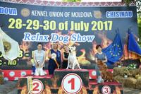 Adele Fairyland Bucher is now Champion of the Breed! IDS Chisinau, Moldova 28.07 - CAC, CACIB, BOB, BIG-1, BIS-4! IDS 29.07 - CAC IDS 30.07 - CAC, CACIB, BOB, BIG-1, BIS-3!