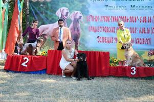 IDS Tiraspol, Moldova IDS 5.08.16: JCAC, J.BOB Special Show 5.08.16: JCAC IDS 06.08.16: JCAC, J.BOB, BOB, BIG-1!!!!!!!! NDS 06.08.16: JCAC, J.BOB, BOB!!! IDS 07.08.16: JCAC, J.BOB