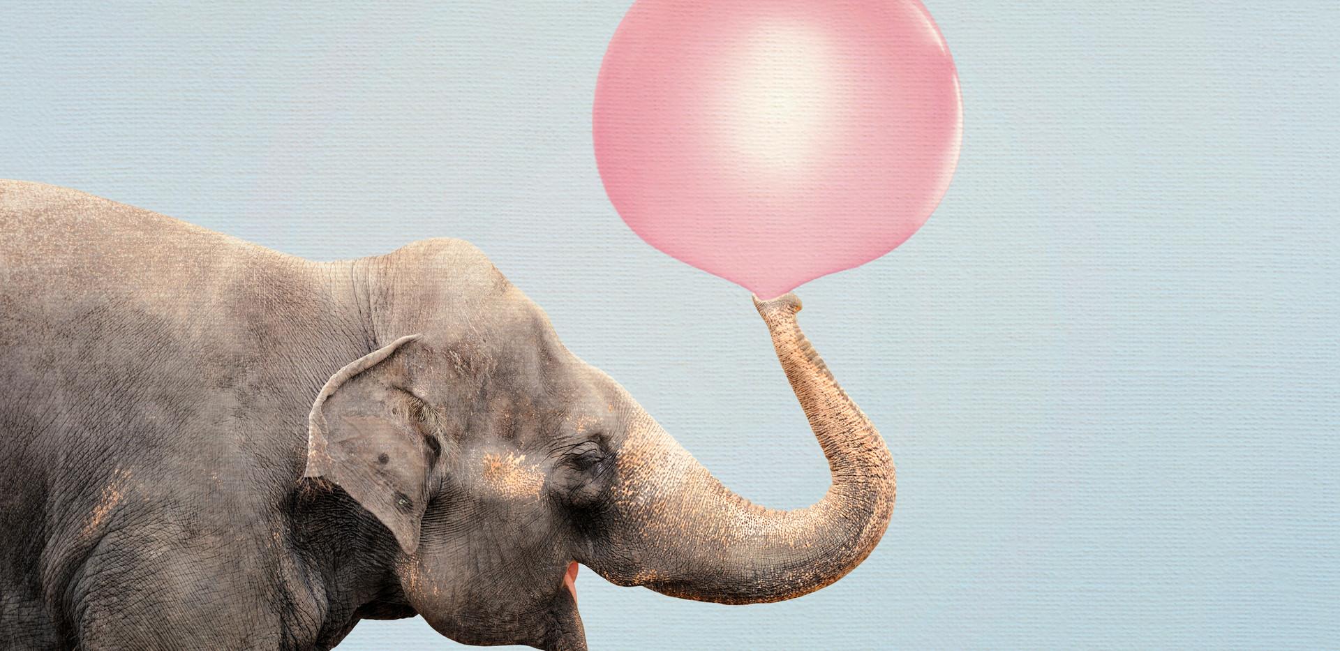 Bubble elephant.jpg