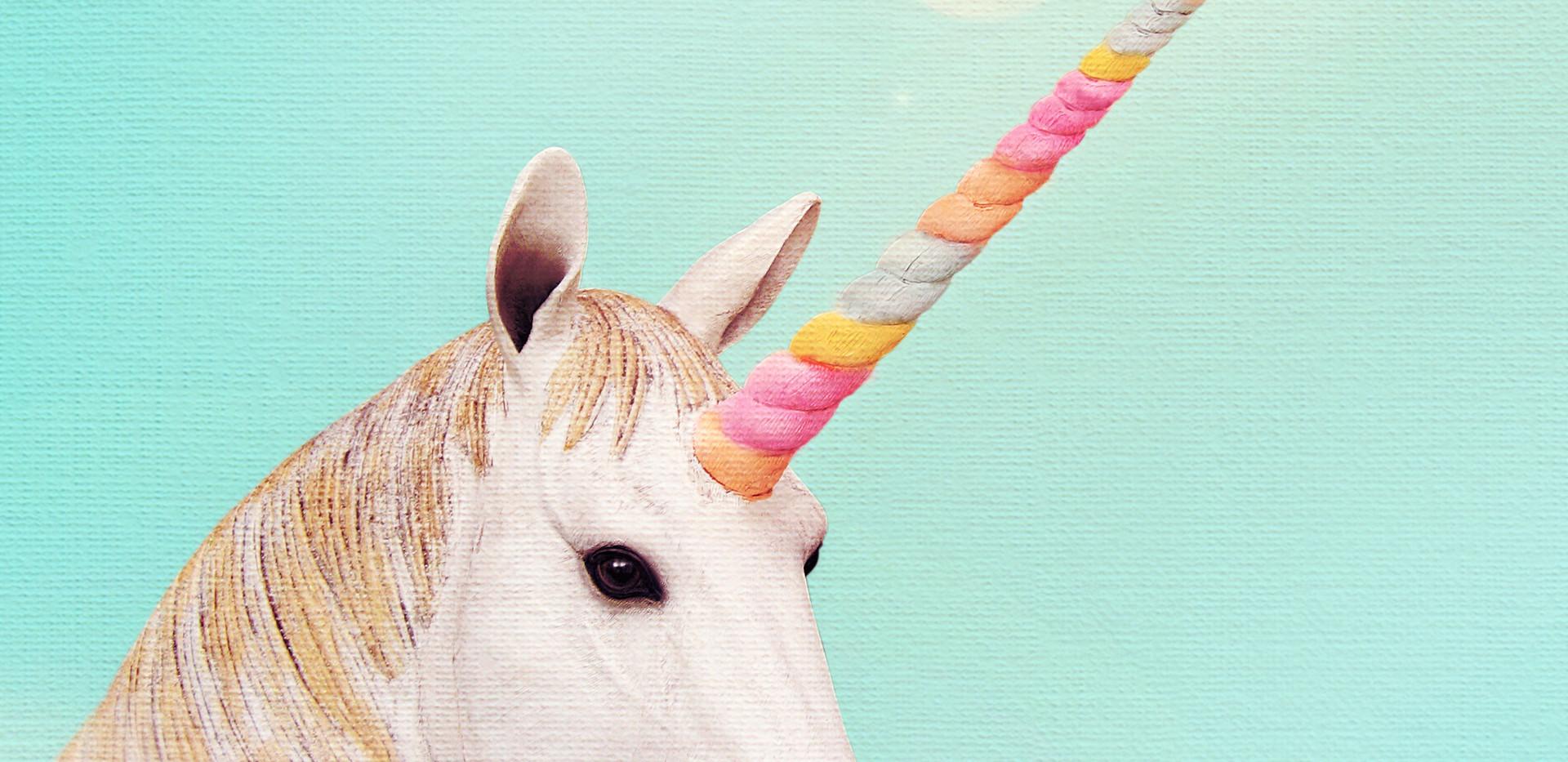 Marshmallow unicorn.jpg