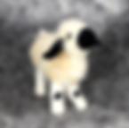 Needle felted black nosed sheep