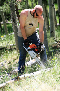 Action #10 Nephew Bucking Logs