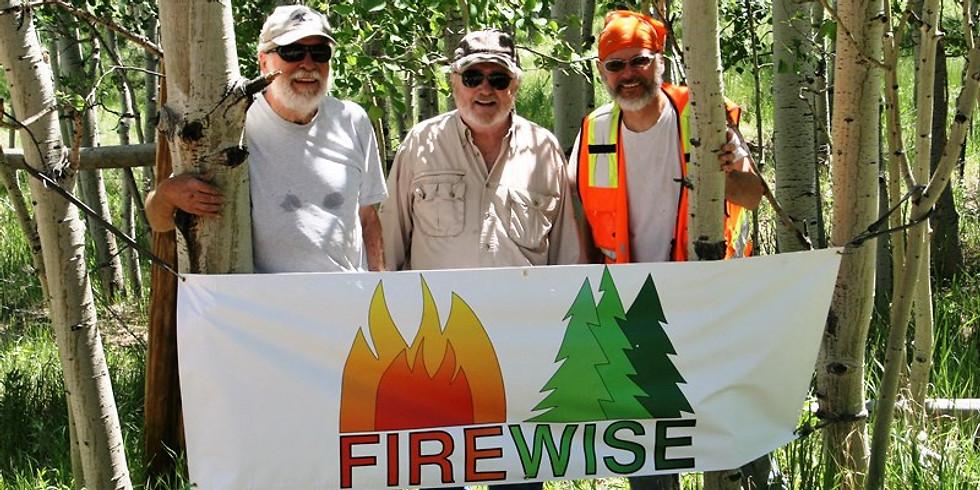Firewise Mitigation Volunteer Event - Schurr #2