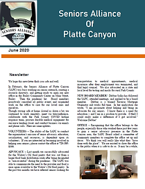 SAPC June Newsletter.png
