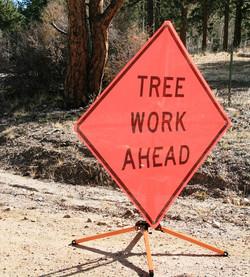 Tree Work Ahead_edited