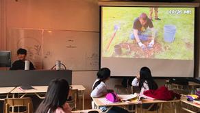 2019년 해바라기 반의 '나무심기 캠페인'