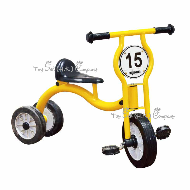 Power Tricycle