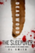 The Sleepover (Small).jpg