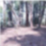 スクリーンショット 2020-05-15 19.08.17.png