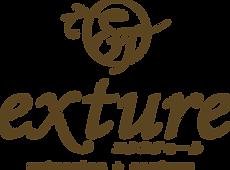 exture_logo.png