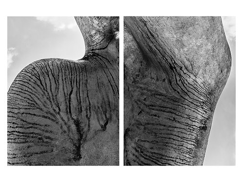 """Tiger stones"" (2018) © Yens Franke"