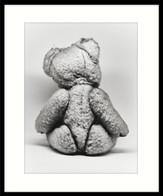 Teddy-gerahmt.jpg