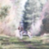 Clumber Park-6.jpg