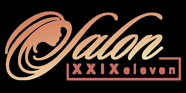 S2911_Logo.png