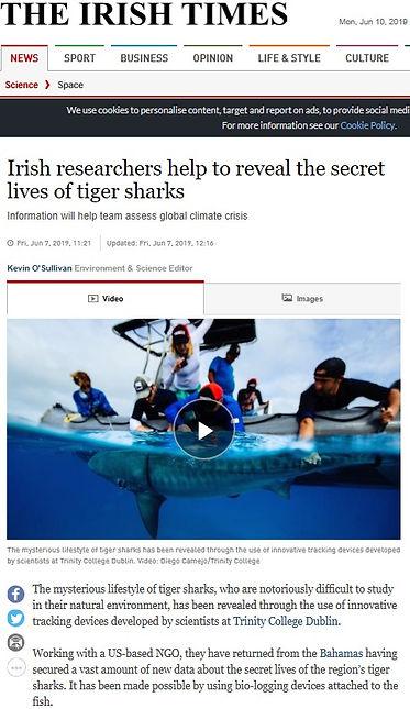 The Irish Times bahamas article.jpg