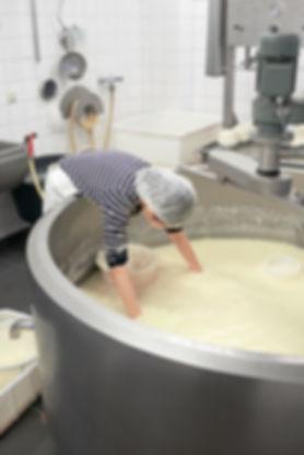 200226 - Adelaide Tam - Romy cheese proc