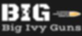 logo_12_1.png