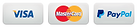 footer-payment-icons.png