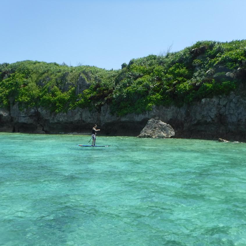海・岩・緑・空