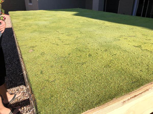 static-grass-wip.jpg
