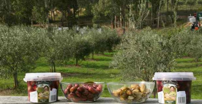 Ambrosia Olives