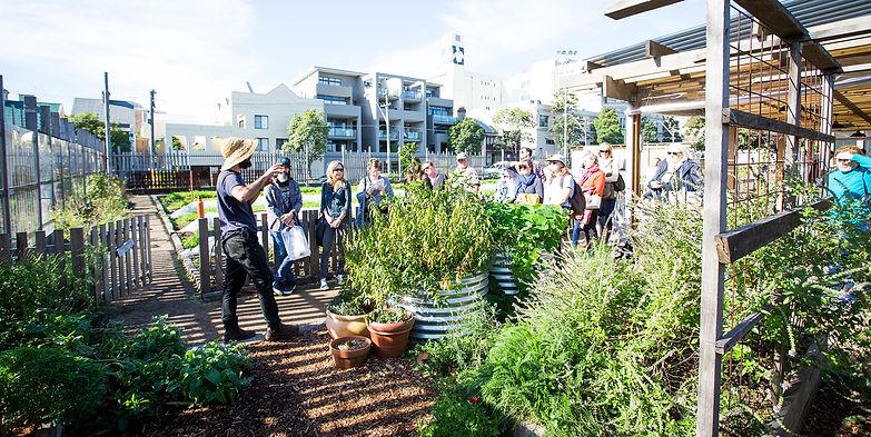 Pocket City Farm Tour Sydney