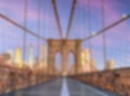 New York Thumbail 4.jpg