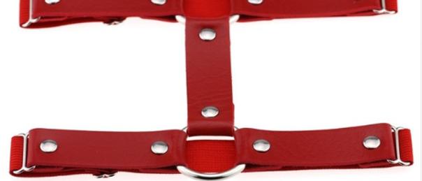 Uh Huh Honey - Leg Garter - Red 2 Pack