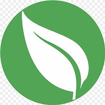 42-428452_high-resolution-leaf-leaf-in-a