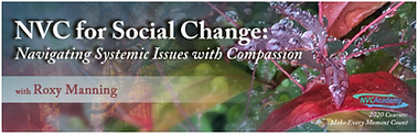 NVC for Social Change.png
