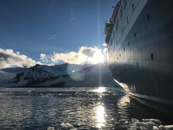 Ocean Endeavour, Antarctica