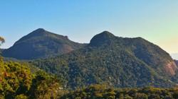 Floresta da Tijuca Trail Run