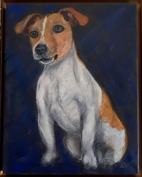 Snoopy the Jack Russell 2-opt.jpg
