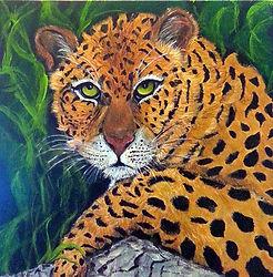 Lindani the leopard_opt 1.jpg