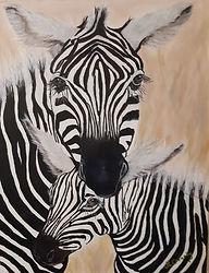 Zebras_opt.jpg