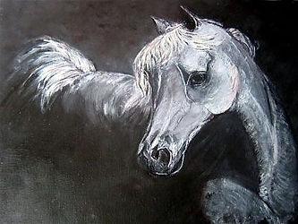 Black and white horse-opt.jpg