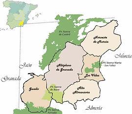 mapa-territorio.jpg