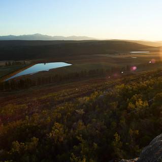 Socios de AlVelAl podrán visitar el proyecto de Commonland en Sudáfrica