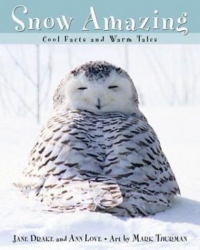 snow amazing cover.png