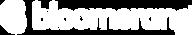 Bloomerang-Logo-Hor-RGB (1).png