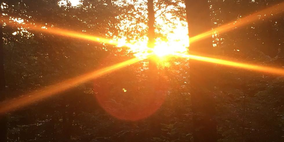 Sonnenwende - Morgenwanderung Uetliberg