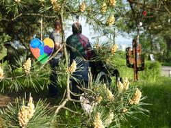 Botschaft-Wunsch-Baum