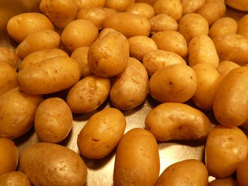 Feine Kartoffeln gehören zu jedem Raclette