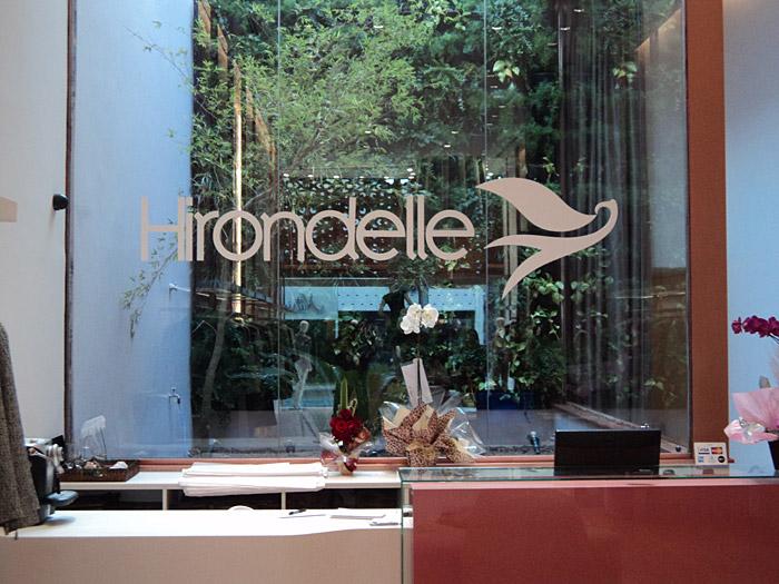 Hirondelle #3