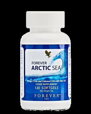376_arctic-sea.png